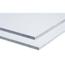 Zementgebundene Leichtbeton-Bauplatte Powerpanel TE fermacell 1250 x 500 x 25 mm