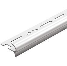 Treppenstufenprofil Dural Florentostep Alu/Silber Länge 100 cm Höhe 11 mm